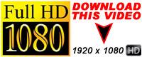 Visit Blowjobs HD